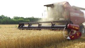 组合收获麦子农业 收获联合收割机的农业 steadicam录影射击行动 免版税库存图片