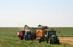 组合玉米收割机喷出 免版税库存图片
