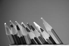 组多彩多姿的铅笔 黑色白色 库存照片