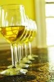 组白葡萄酒 库存照片