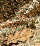 组织、橡木叶子和橡子的片段 免版税库存照片