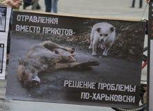 组织的动物保护集会 免版税图库摄影