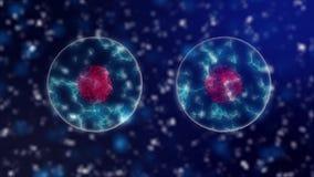 细胞分裂与紫色细胞核的微生物学背景和蓝色霓虹细胞质在显微镜下 opular 库存例证