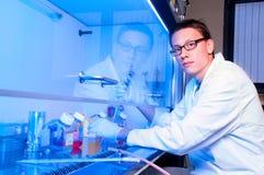 细胞培养工作在现代实验室 免版税库存照片