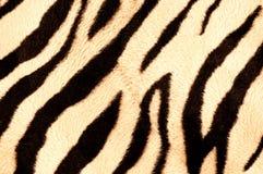 织品纹理斑马 免版税库存图片