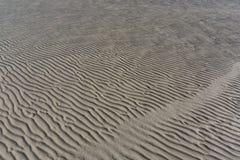 织地不很细沙子处于低潮中起波纹 库存照片