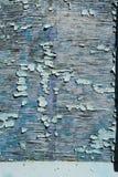 织地不很细背景崩裂了木表面上的蓝色油漆 免版税库存照片