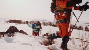 绊倒,落和屏息一个小组登山人在一座多雪的山上升,他们克服坚硬方式  影视素材
