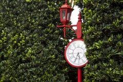 经典与树的时钟室外皮 免版税图库摄影