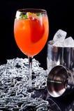经典意大利语Aperol喷鸡尾酒包括的prosecco、开胃酒和苏打水与橙色切片,新鲜薄荷 免版税图库摄影
