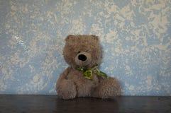 经典玩具熊对蓝色墙壁布朗和卡莫 免版税图库摄影