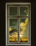 经典白色外面树的窗口和看法 库存照片