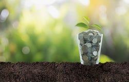 经济投资和兴趣概念 免版税库存照片