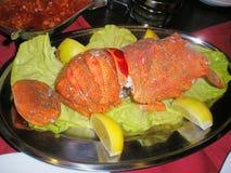 经验丰富的被烘烤的龙虾仁用柠檬和黄油调味汁 图库摄影