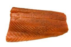 经验丰富的鳟鱼 免版税库存照片
