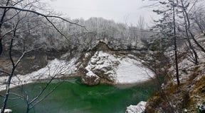 结冰和纯净的绿色水 免版税库存照片