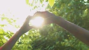 结合在心脏形状,不尽的爱,同性恋取向的横穿手 影视素材