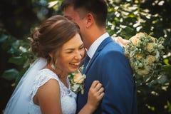 结合拥抱和亲吻在自然公园背景的新郎和新娘 图库摄影