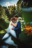 结合拥抱和亲吻在自然公园背景的新郎和新娘 库存图片