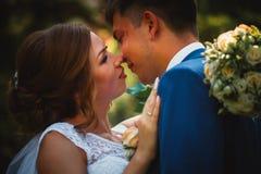 结合拥抱和亲吻在自然公园背景的新郎和新娘 库存照片