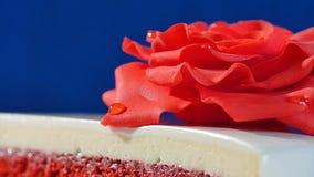 结块,一与红色玫瑰的层数白色和棕色巧克力蛋糕在上面,宏指令 用可食装饰的被切的巧克力蛋糕 库存图片