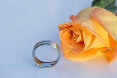 结婚戒指被镀铬的和橙色玫瑰,在轻剧烈下,在白色背景 免版税库存照片