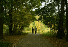 结婚的夫妇森林 免版税库存图片