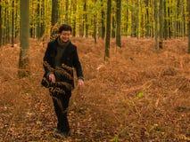结构在秋天森林里 免版税库存图片