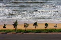结构树、在泰国的海湾的海运和海滩 库存照片