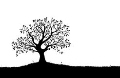 结构树剪影,黑白向量形状 免版税库存图片