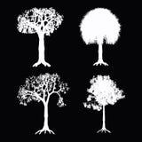 结构树向量 图库摄影