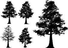 结构树向量 免版税库存图片