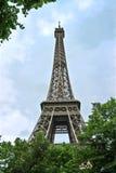结构树在埃佛尔铁塔附近的一个公园。 巴黎。 免版税库存照片