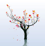 结构树在秋天 向量例证