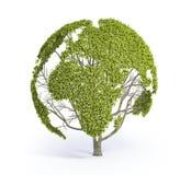 结构树形状的世界地图 免版税库存图片