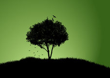 结构树有绿色背景 库存例证