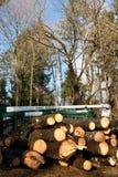 结构树服务卡车 免版税库存照片