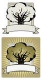 结构树标签 库存照片