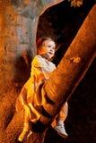 结构树的确信的小的女孩 库存图片