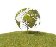 结构树被塑造象世界地图 皇族释放例证