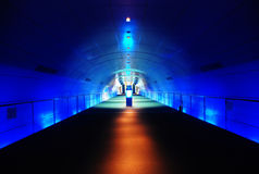 结构现代隧道 库存照片