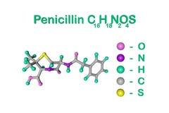 结构真菌毛丛导致的青霉素抗生素化学式和分子模型 这是一个  库存例证