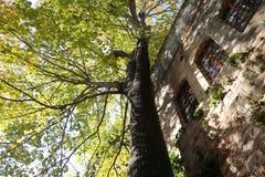 结构beitiddine传统的黎巴嫩 库存图片