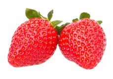 结果实宏观草莓草莓 免版税库存照片