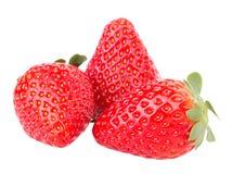 结果实宏观草莓草莓 免版税库存图片