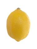 结果实热带的柠檬 库存图片