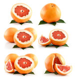 结果实葡萄柚查出的成熟集白色 免版税库存照片