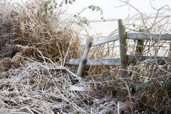 结霜的国家(地区)范围 库存照片