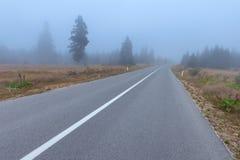 绕柏油路在恶劣天气的山森林里 免版税库存照片