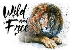 绘动物的食肉动物的动物国王的狮子水彩狂放&自由 免版税库存照片